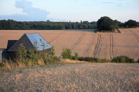 Farmland_at_Westley_Bottom_-_geograph.org.uk_-_923638